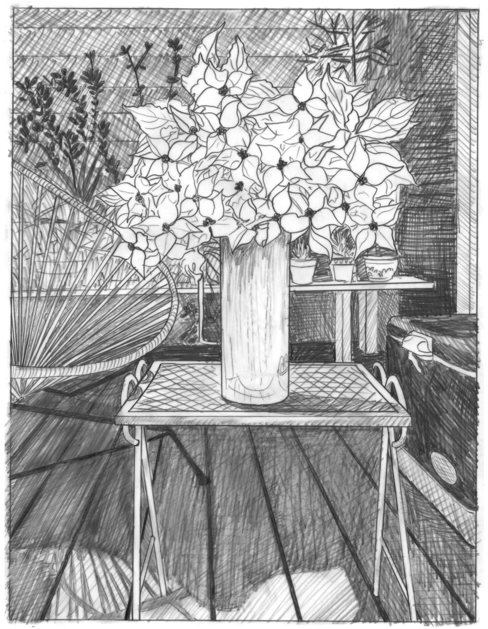 Greenpoint Dogwood/Domestic Bliss (graphite)