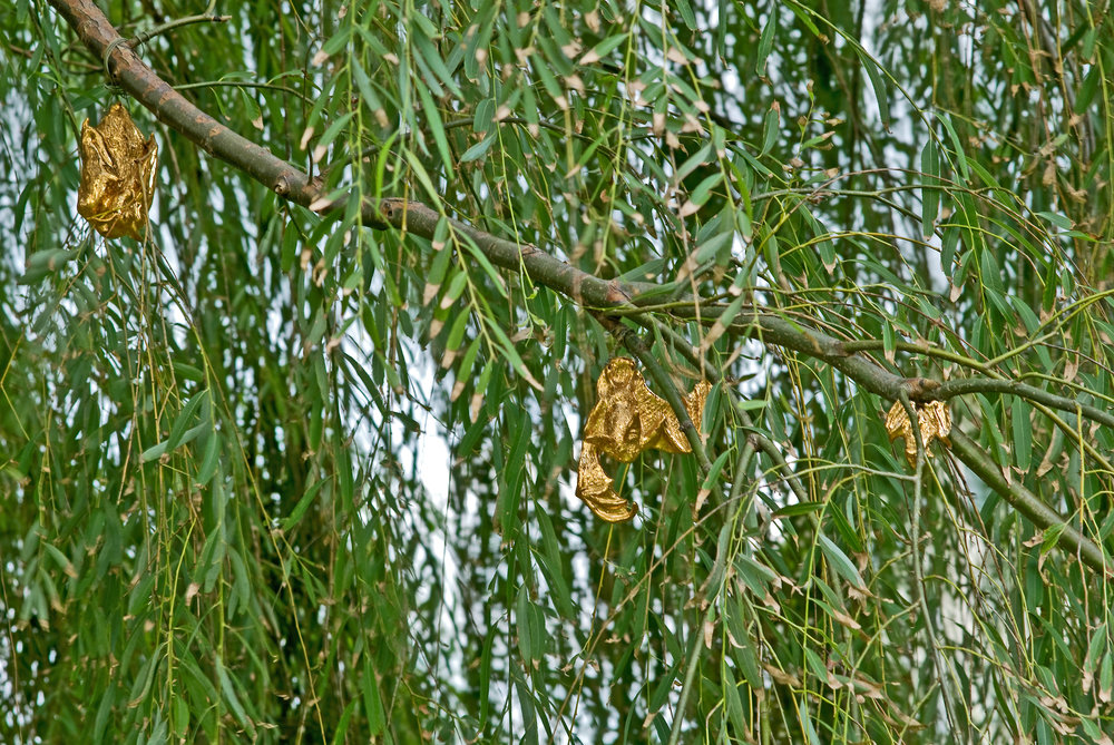 Gilded Phytophillic Bats (Brooklyn Bridge Park)