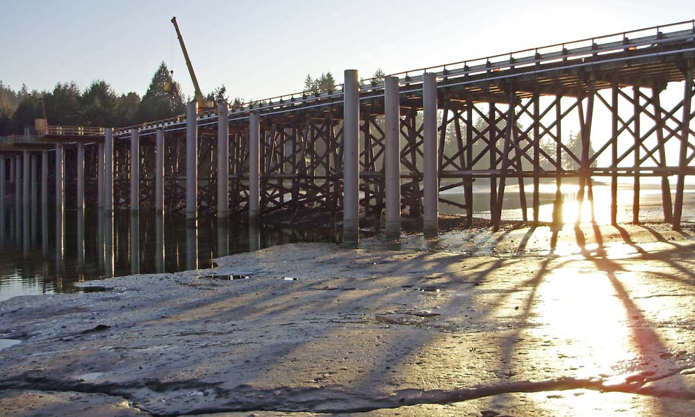 RAFT ISLAND BRIDGE REPLACEMENT , Gig Harbor, Washington  Owner/Client : Raft Island Improvement Association  Services : Civil and Structural Engineering, Environmental Permitting