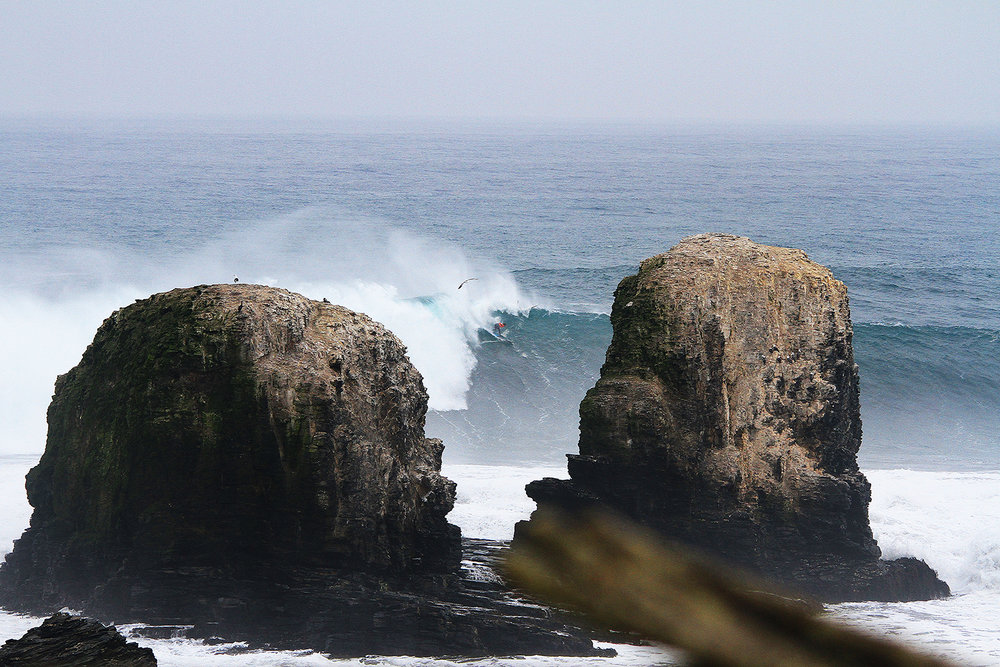 Guillermo Satt at Punta de Lobos by Saez