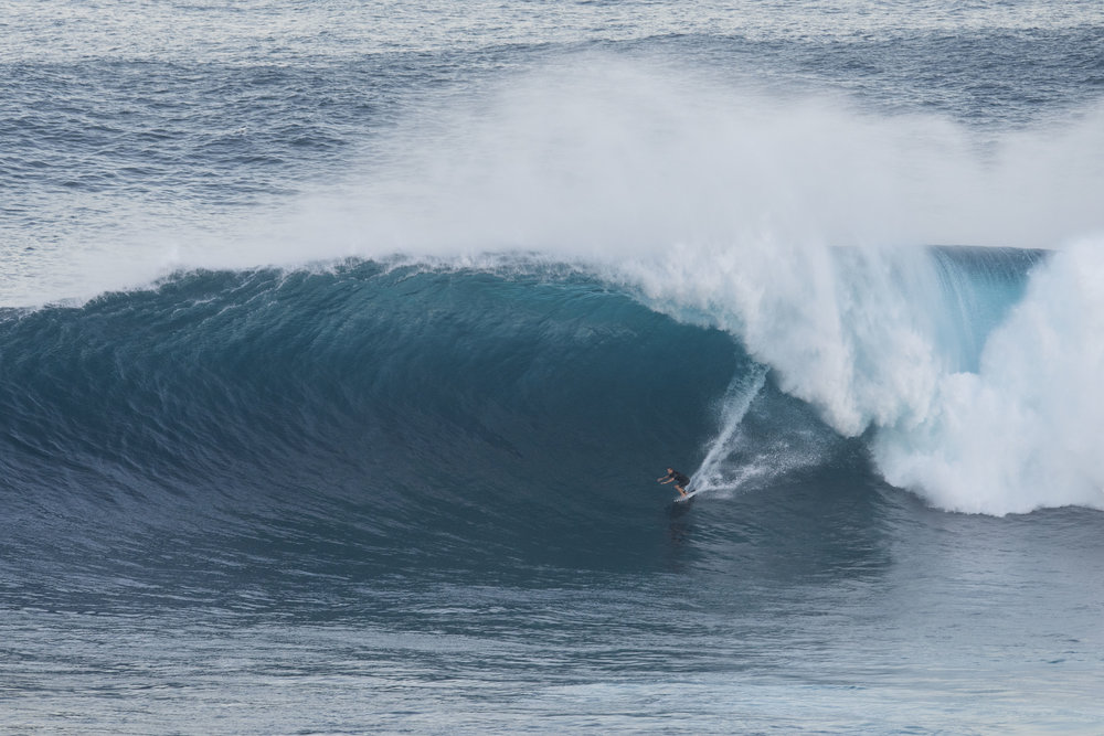 Trevor Sven Carlson at Jaws by Egan