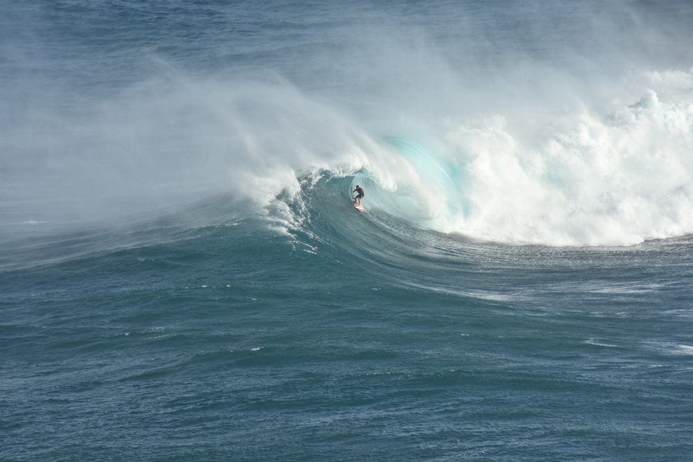 Albee Layer at Jaws 2 by Furlan