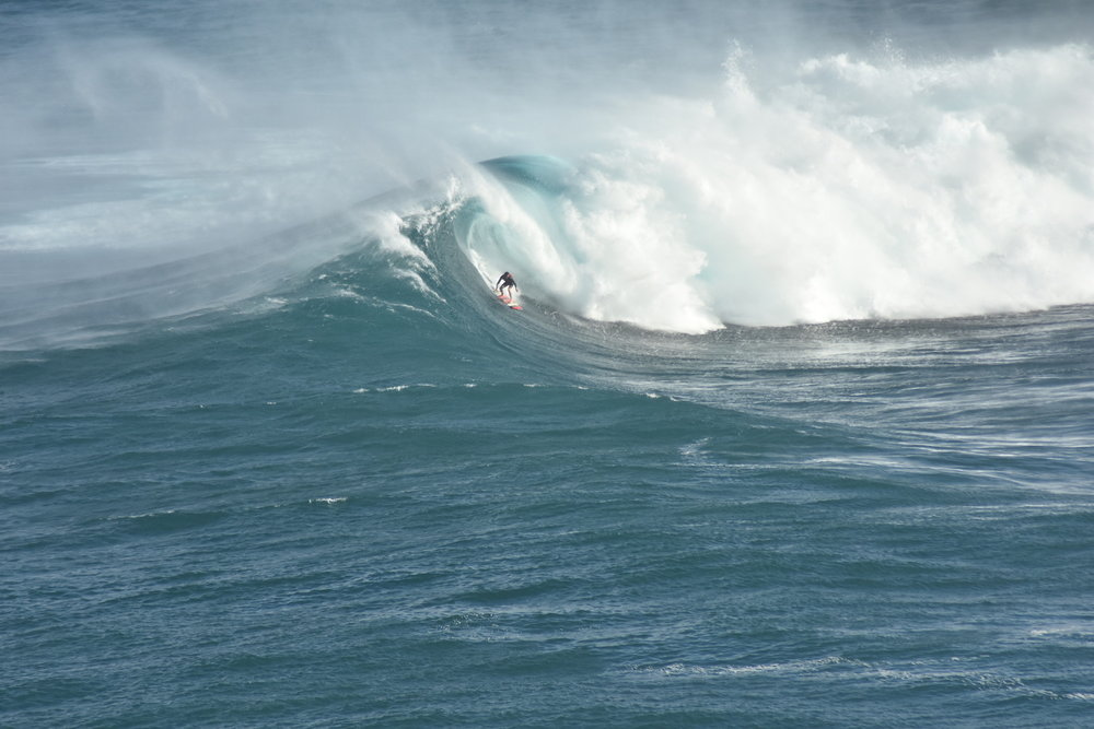 Albee Layer at Jaws 3 by Furlan