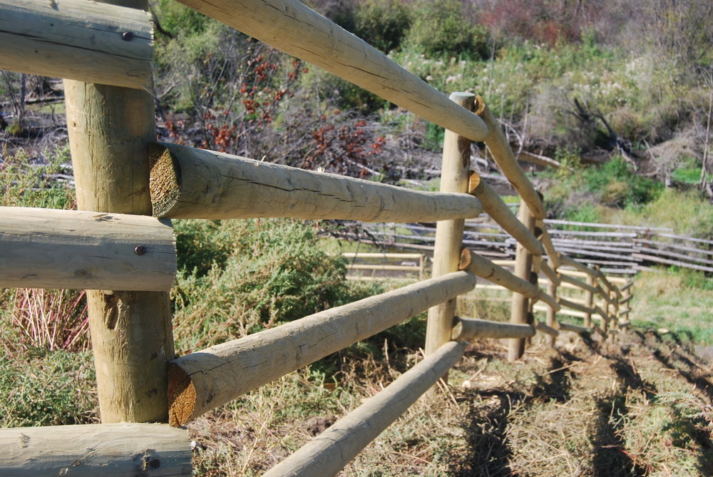 Water quality protected by livestock exclosure fence.jpg