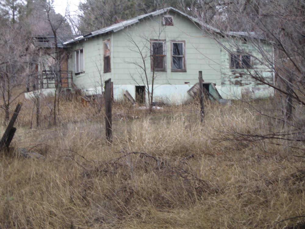 Derelict Housing 06.jpg