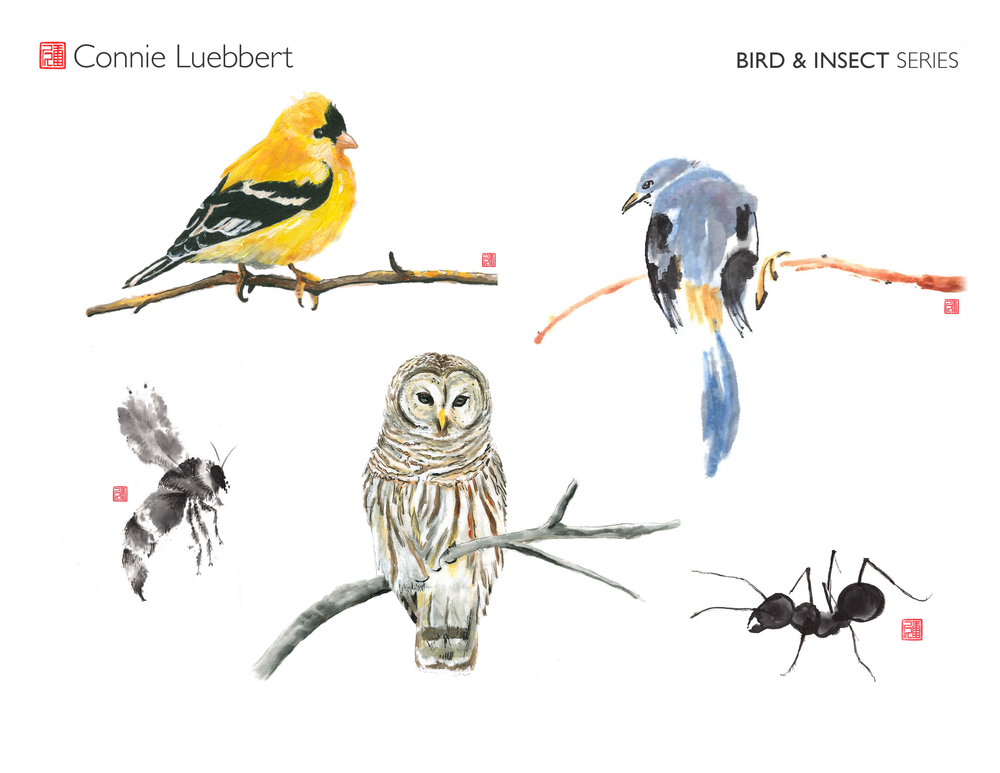 - AMERICANIZED CHINESE BRUSH PAINTING: BIRD & INSECT SERIES …available on canvas, prints, towels