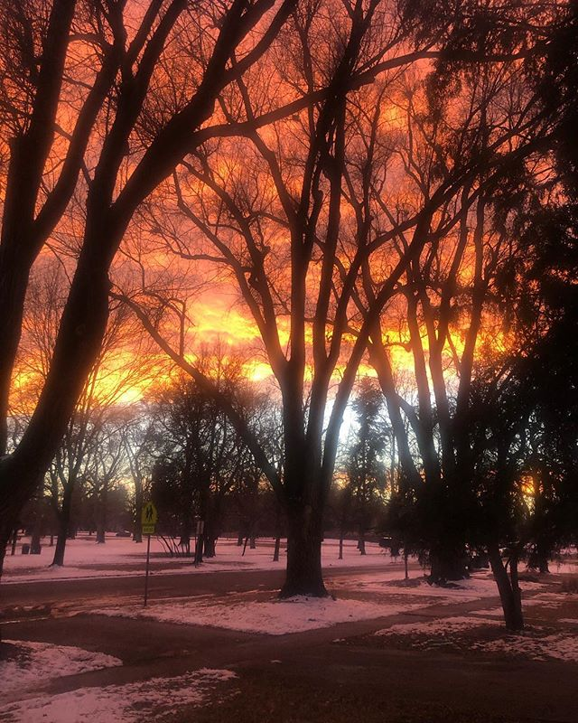 Love me some Longmont @longmontcolorado #color #colorado @visitlongmontcolorado #beauty #sky #sunset #sunsets #sunset_pics