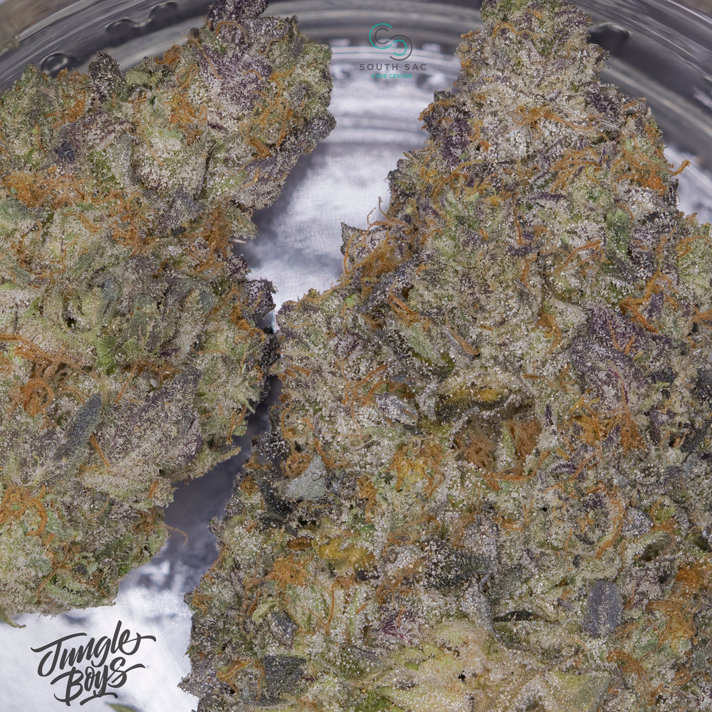 Here's a shot of Gelato! Very strong aroma & powerful effect.