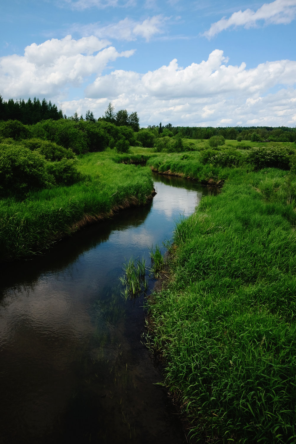 The Mississippi River near the Headwaters