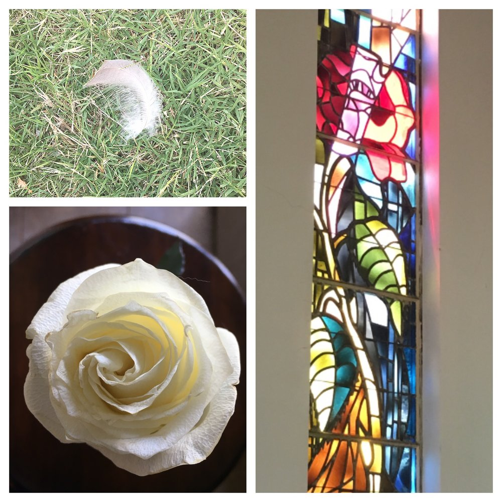 A feather right before I walked into Grandma's service in the Chapel of the Roses. Last but not least, the most special rose of my life. — with  Faye Willoughby .