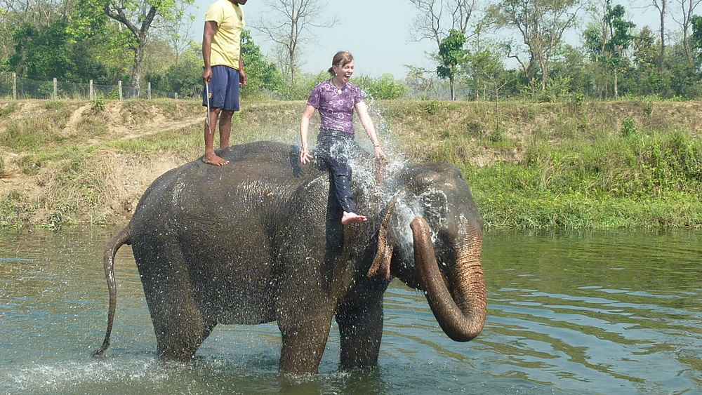 Mary Anthony Realtor Elephant Shower.JPG