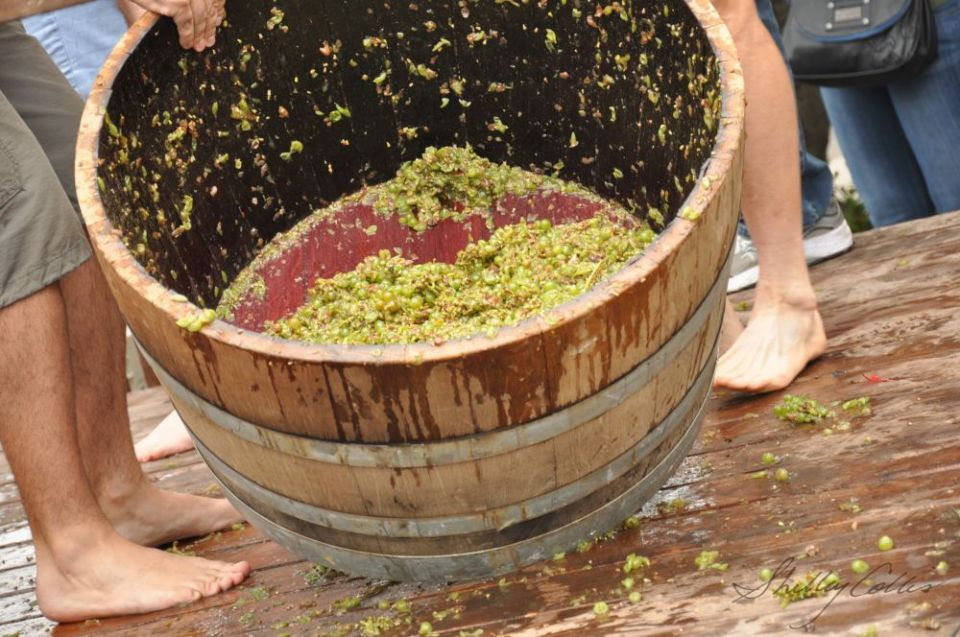 Grape-Stomp-Barrel-2013_fitbox_960x960.jpg