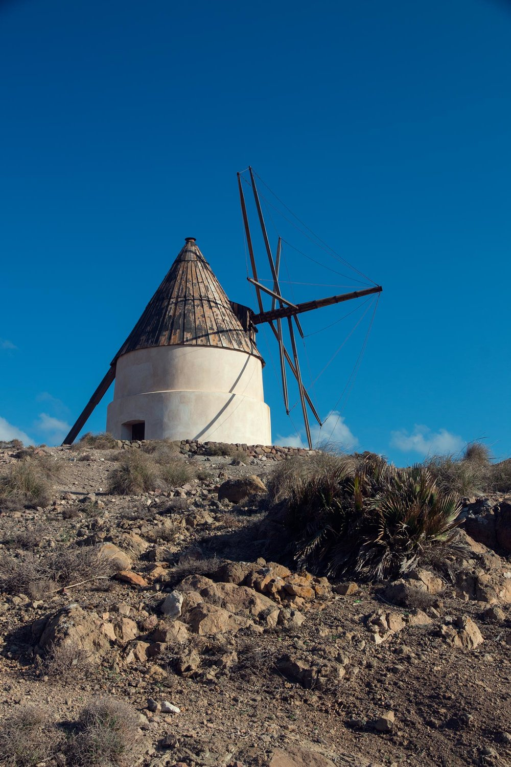 Windmill near Playa de Los Genoveses.