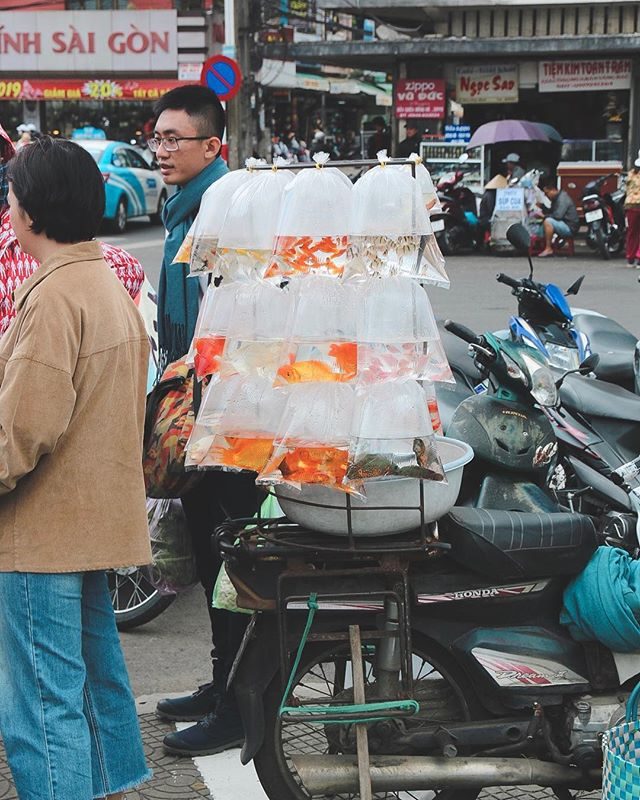 Fishing for a compliment. . . . . . #dalat #dalattrip #vietnam #vietnamadventures #streetphoto #streetphotography #reportage #reportagephotography #igtraveller #scooterlife