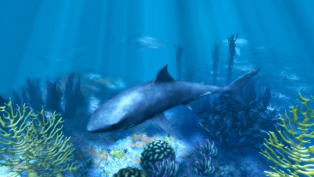 oceanfloor.jpg