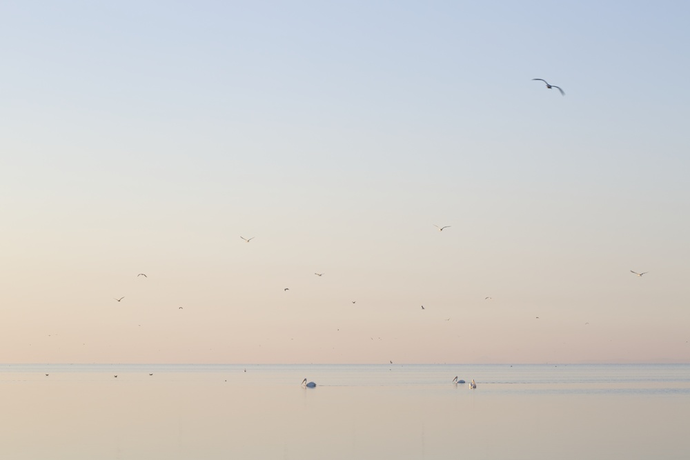 View No. 4, Salton Sea, California,  2015