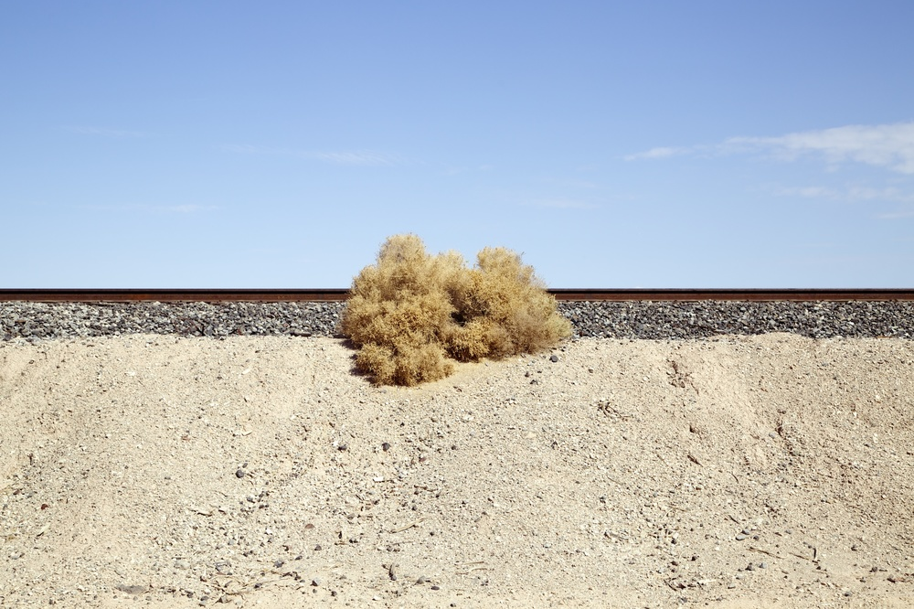 Railway Line & Salt Bush, Salton Sea, California , 2014