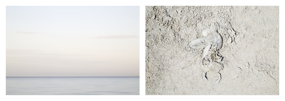 Salton Sea No. 1 , California, 2014