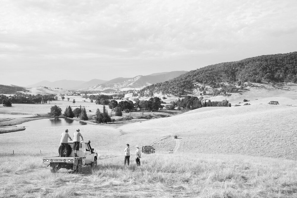 The Space Between Us , 2017 Documentation Still, Tallangatta Valley, Australia