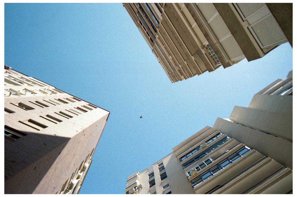 Bird & Buildings.jpg