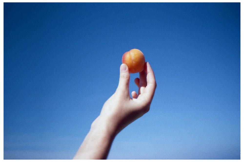 Peach & Water.jpg