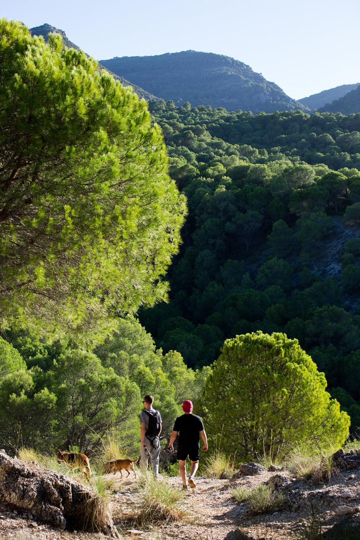 Spain walk.jpg
