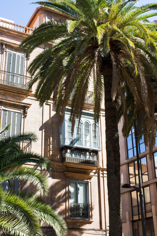 house and palm.jpg