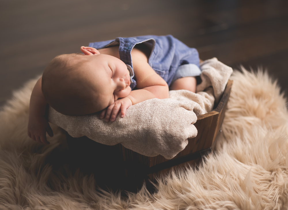 newborn photoshoot, zen photography