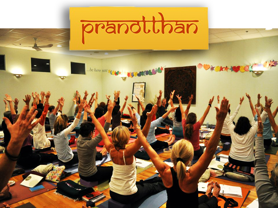 Pranotthan-Yoga-Teacher-Training-1-Steven-Hartman.jpg