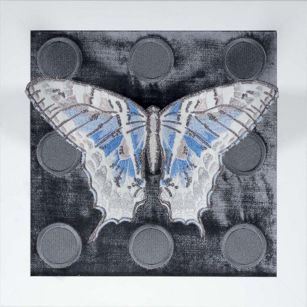 Blue Butterfly Series 1.jpg