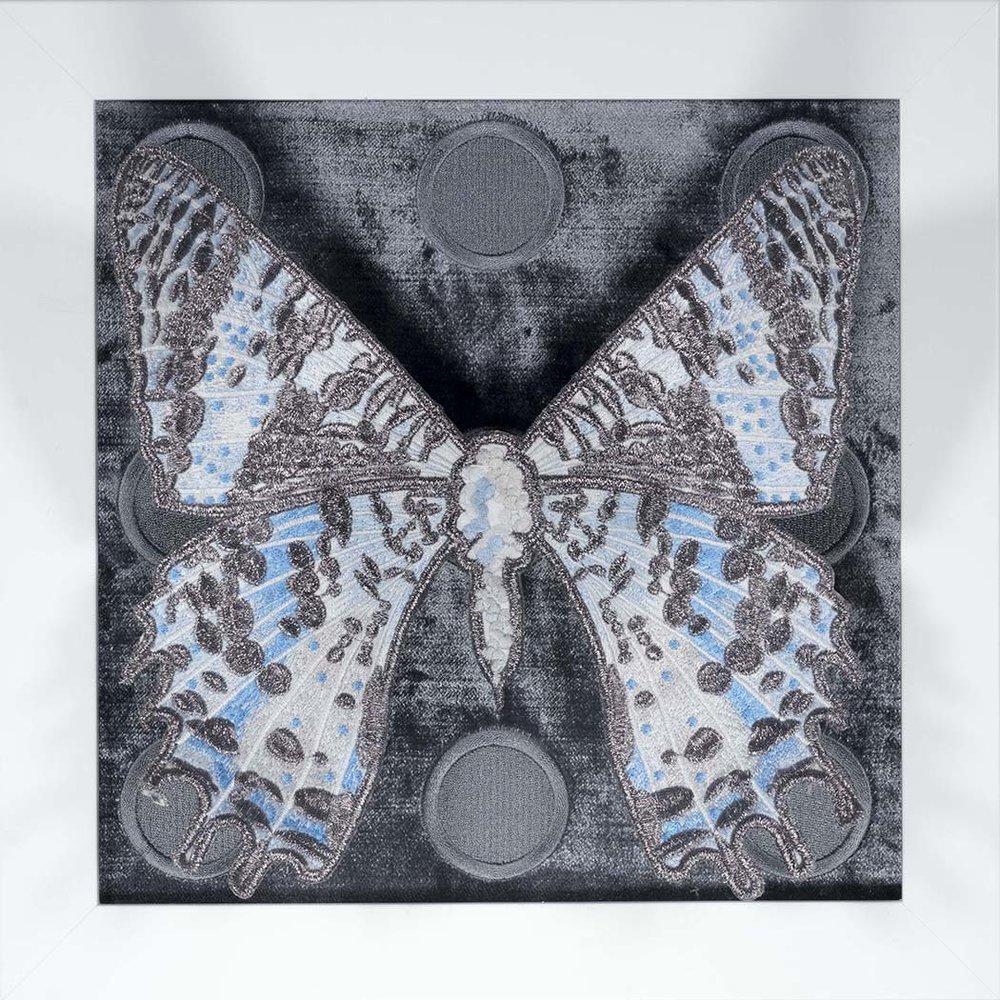 Blue Butterfly Series 3.jpg