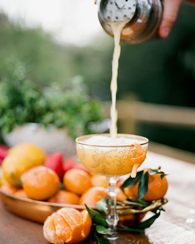 Cocktail Time.... Shelf Road- fresh Pixie tangerine juice, Pixie shrub, lemon juice, gin, simple syrup, lavender bitters, rosemary garnish⠀ ⠀ 📸 Photography by @annadelores @rhianna_annadelores 🍗Food by @feastandfestsb 🌸Florals by @idlewildfloral 💍Jewels @coast2coastcollection 💌Stationary @oakorchid 🏡Venue @camplosolivos 🎉Styling @magnoliaed 🎥 @thesemomentsmatter