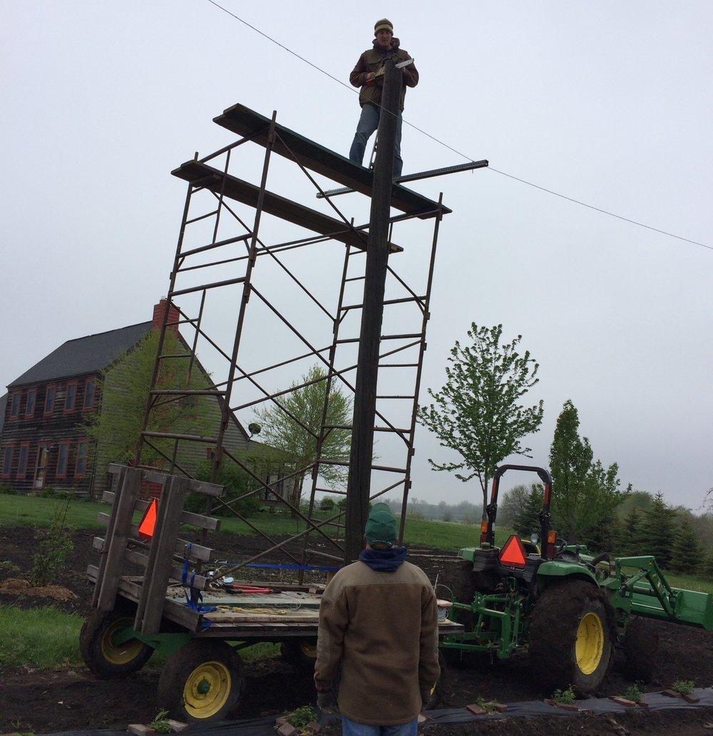 Finetuning the Hop Trellis Poles