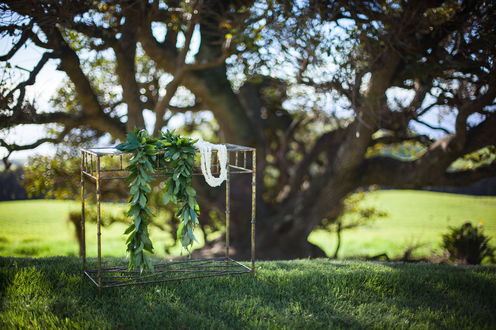 big island hawaii kahua ranch wedding © kelilina photography 20170106155817.jpg