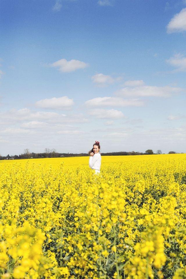 Hello yellow canola flower fields china kanga lifestyle hello yellow canola flower fields china mightylinksfo