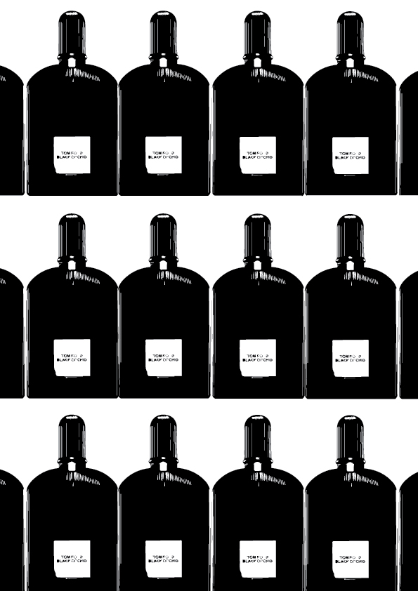 black-orchid-illustration-dillondot.jpeg
