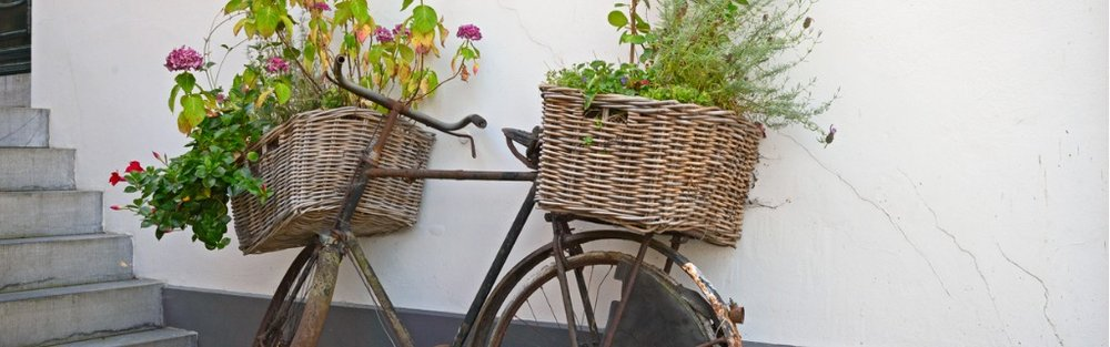reused-bycycle-with-baskets-of-flowers-picture-id639045220.jpg