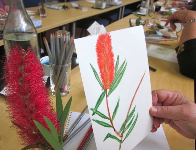 Drawing from nature  - Carers' Carnival 2012