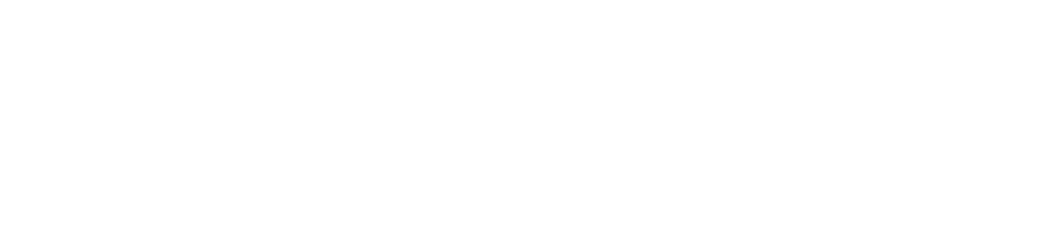 Bluebird Foundation Inc