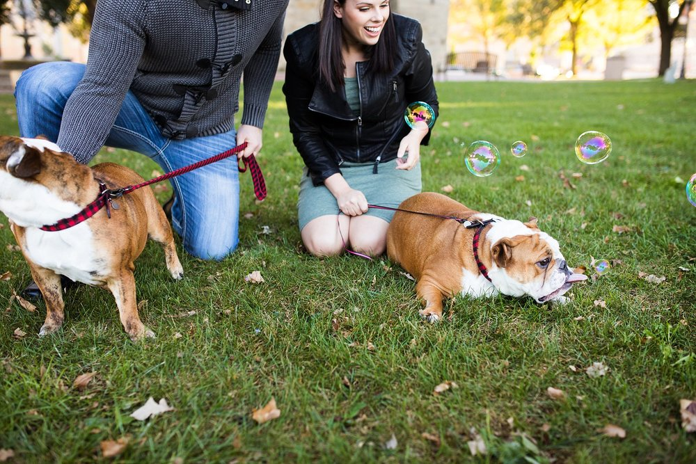 Bulldogs&Bubbles_blog_05.jpg