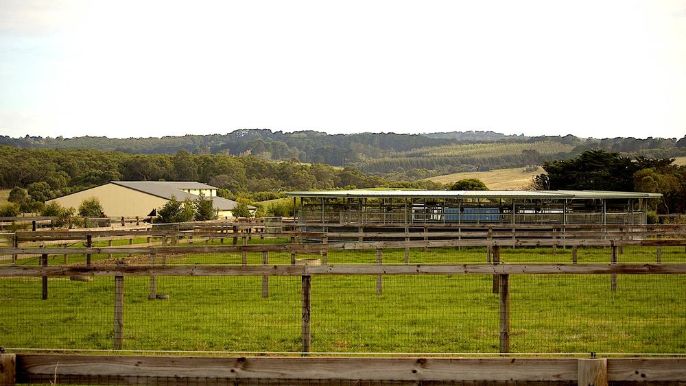 Musk Creek Farm