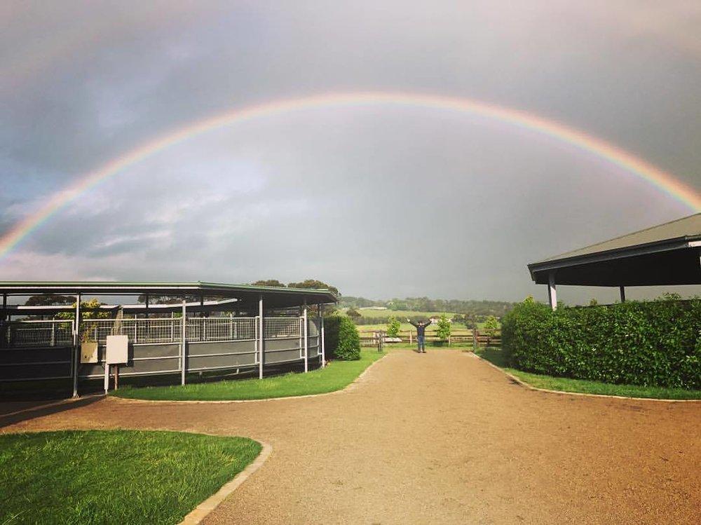 Yearling Barn Rainbow.jpg