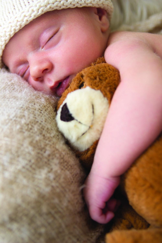 cuddles_closeup.jpg