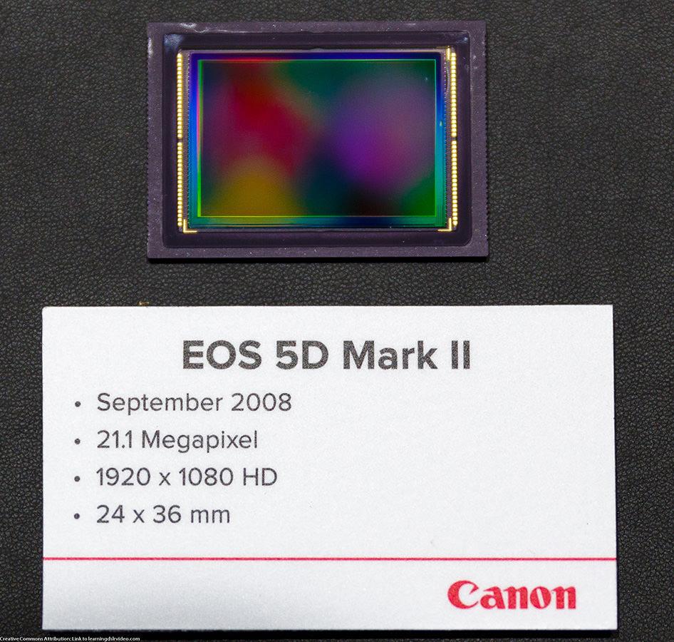 21.1 Megapixel from canon sensor