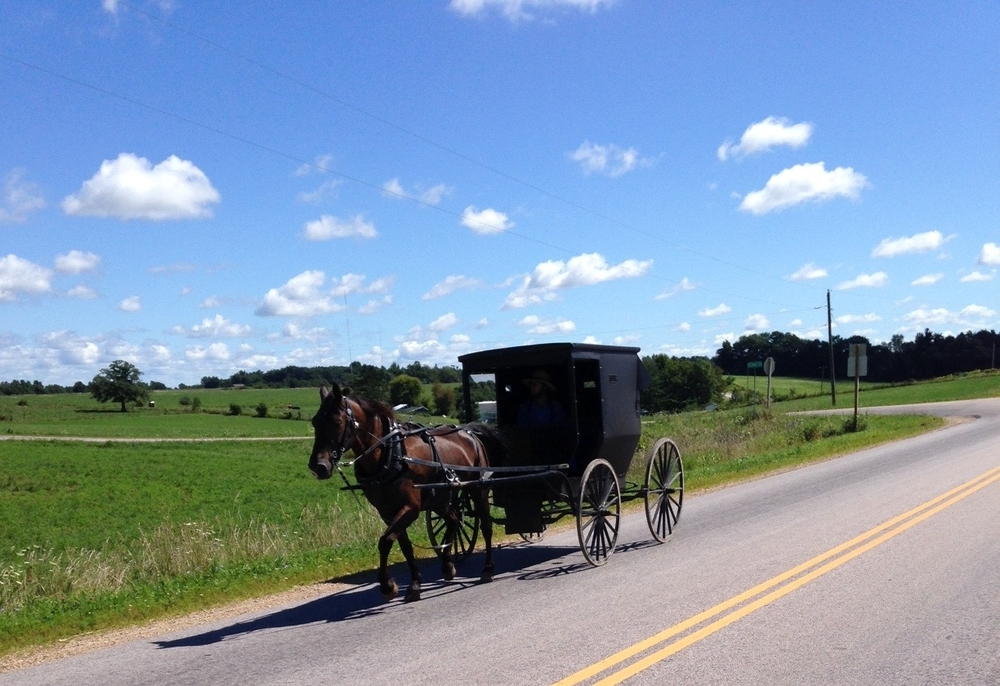 We passed this buggy today in an Amish area of Wisconsin