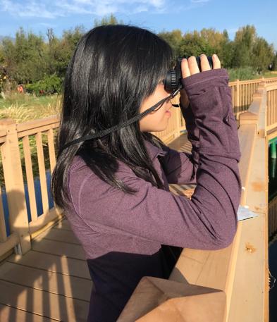 birdwatching.png