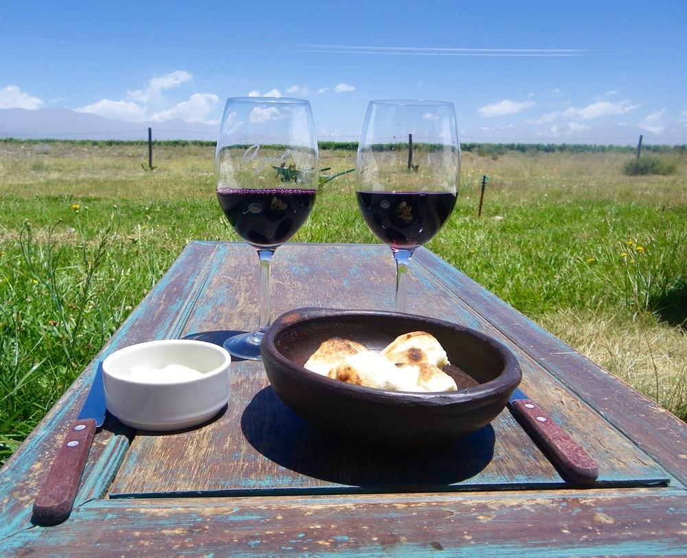 Mendoza Argentina Azul Winery