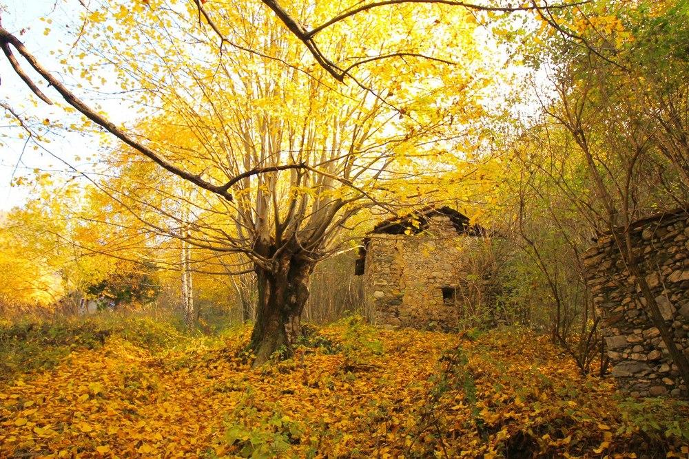 Sentiero del Viandante Lake Como Fall