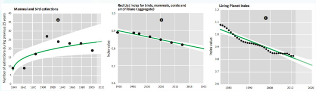Recent trends in key measures of the extinction, extinction risk and conservation status of species, with extrapolations to 2020 assuming constant underlying processes: A) observed extinction rates of birds and mammals, showing a rising trend; B) the aggregate Red List Index of birds, mammals, amphibians and corals—significant decrease suggesting a continuing movement towards extinction; C) the Living Planet Index, with a significant decrease reflecting declines in species populations. Source: CBD, Global Biodiversity Assessment 4, 2014
