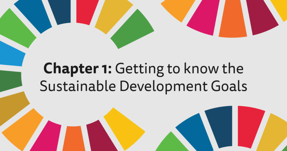 Getting to know the Sustainable Development Goals - An introduction to the SDGs
